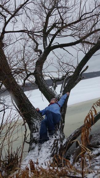 lying on a tree